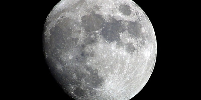 MOON Over Medicare Or MOONed By Medicare?